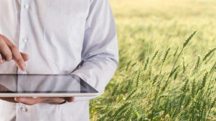 Por que o empreendedorismo AgTech é uma alternativa profissional