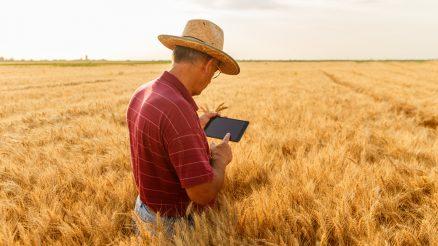 Como empreender na área de tecnologia para a agricultura