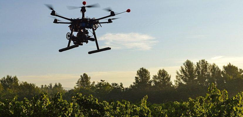 O uso de drones no combate ao desmatamento
