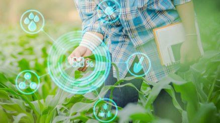 O futuro da agricultura de precisão