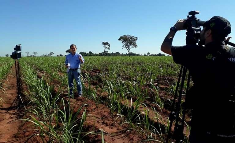 Solucione combina experiência em TV e web e tem se destacado no mercado paulista