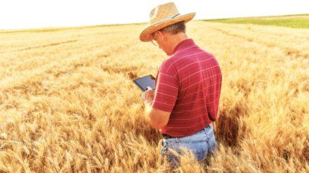 O produtor rural e a internet