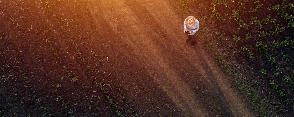 fazendeiro-drone
