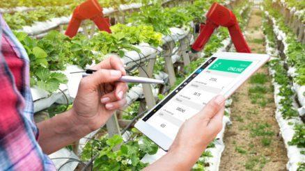 tablet-fazenda